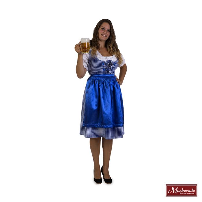 Blauw geblokte Oktoberfest dirndl